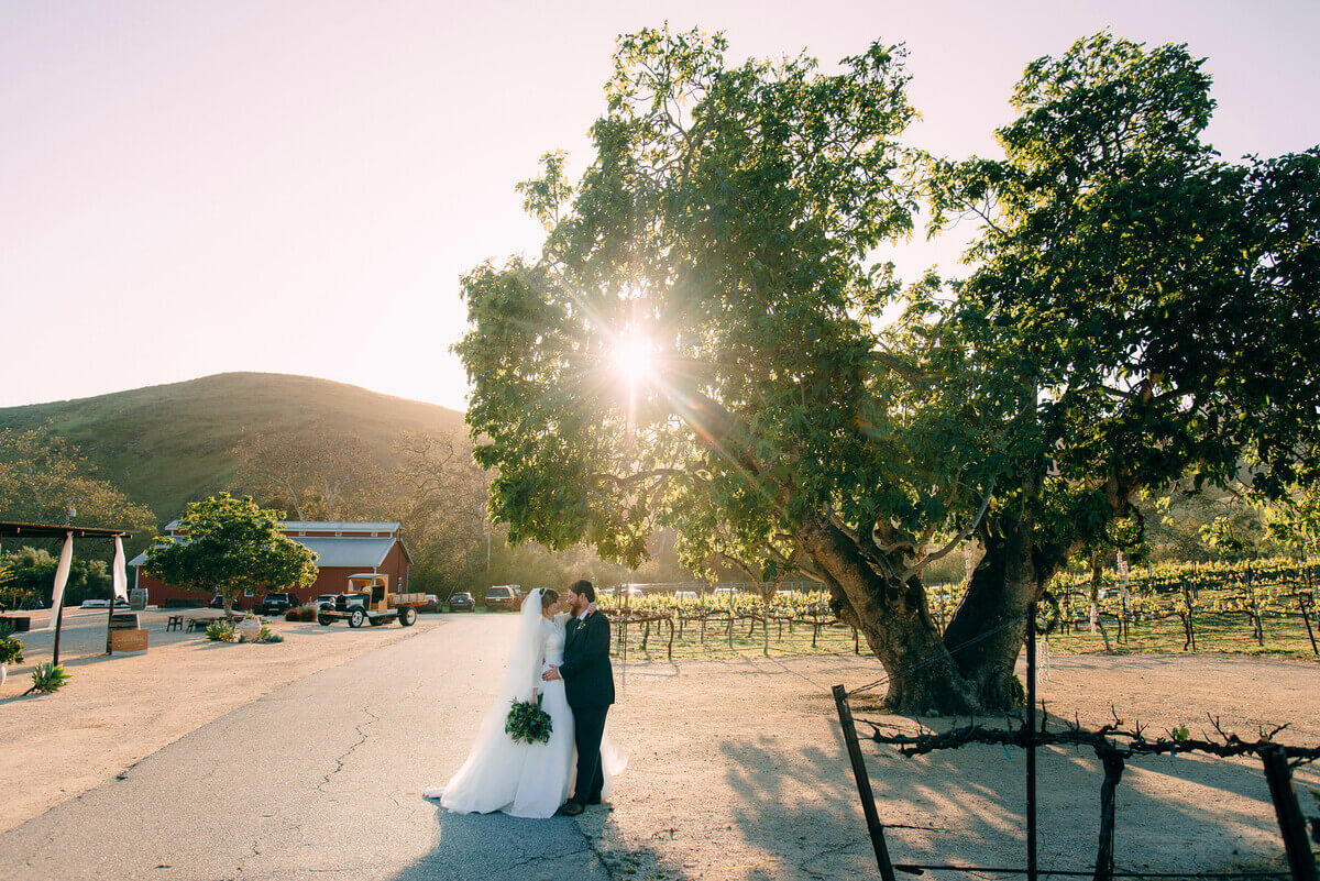 All you need to know about your Higuera Ranch wedding!